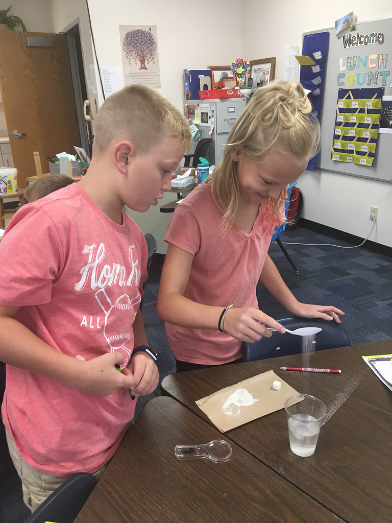 Macy and Owen investigating solubility of a substance!